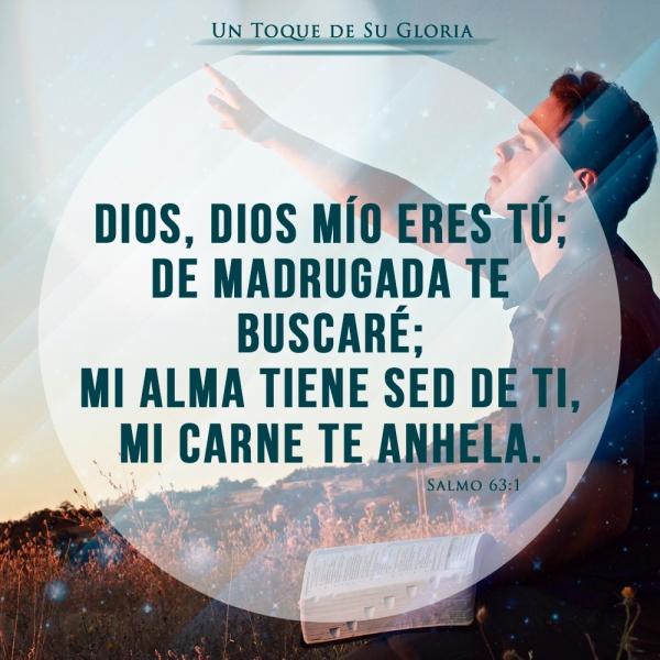 Dios Mio Eres tu