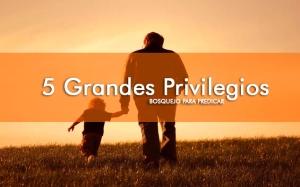 5 grandes privilegios